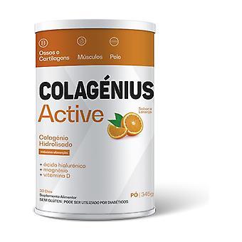 Collagen Active Orange (New Image) 345 g