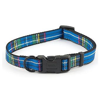 Ancol Blue Tartan justerbar hundhalsband - 20-30cm