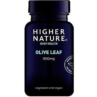 Higher Nature Olive Leaf 500mg Vegetarian Capsules 90 (OLE090)