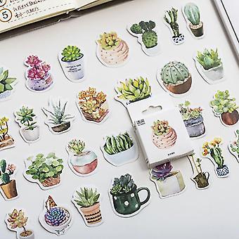 Favorite Succulent Plants Stickers Set