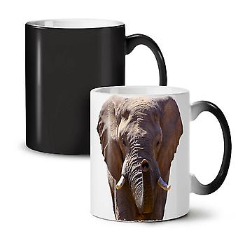 Elephant Safari Animal NEW Black Colour Changing Tea Coffee Ceramic Mug 11 oz | Wellcoda