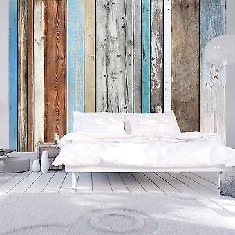 Fototapetti - Colors Arranged