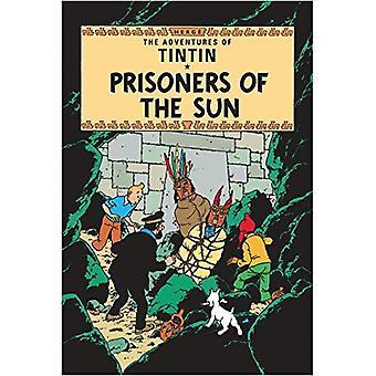 Tintin - fångar solens (Tintin)
