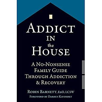 Addict in the House: A No-Nonsense Family Guide Through Addiction and Recovery