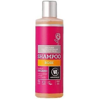 Urtekram Organic Rose Shampoo (Dry Hair) 250ml x6