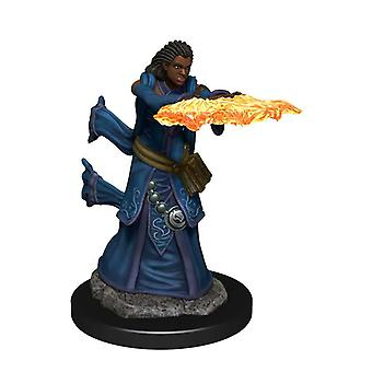D&D-ikoner för Realms Premium Figures (W4) Human Wizard Female