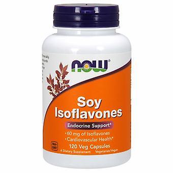 Nyt Elintarvikkeet Soy Isoflavones, 60 mg, 120 Veg Caps