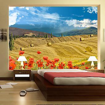 Wallpaper - Autumn landscape