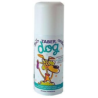 DFV Taberdog Foam Shampoo 150ml Seca (Dogs , Grooming & Wellbeing , Shampoos)