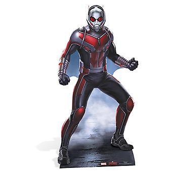 Ant-Man beundre Lifesize pap påklædningsdukke / Standee / står
