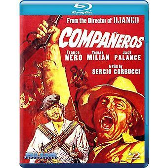 Companeros [BLU-RAY] USA import