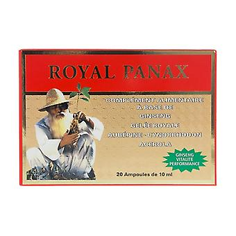 Royal Panax alcohol free 20 ampoules of 10ml