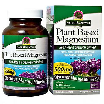 Nature's Answer Plant Based Magnesium, 90 Caps