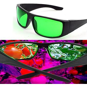 Grow Glasses Protective Indoor Hydroponics Led Grow