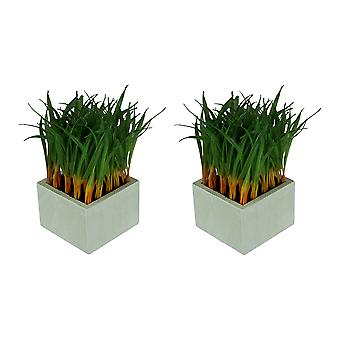 Set of 2 Onion Grass Artificial Plants With White Wooden Cube Planters