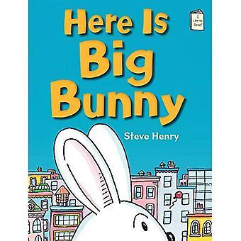 Voici Big Bunny (j'aime lire des livres)