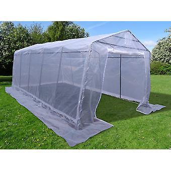 Polytunnel Greenhouse, 3.3 x6x 2.4 m, PE, 19,8 m², läpinäkyvä