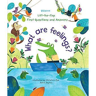 O que são sentimentos? por Katie Daynes - 9781474948180 Livro