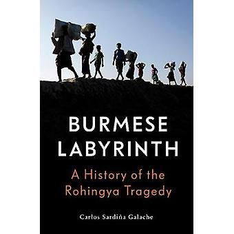 The Burmese Labyrinth by Carlos Sardina Galache - 9781788733212 Book