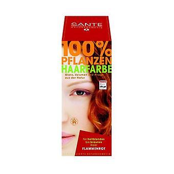 Vegetable Powder Dye Copper (Flame) 100 g