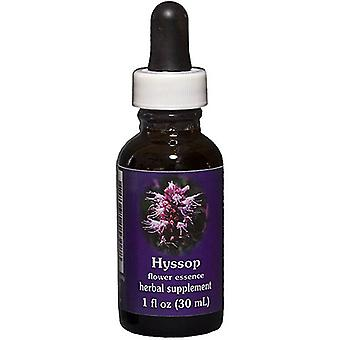 Flower Essence Tjänster Hyssop Dropper, 1 oz