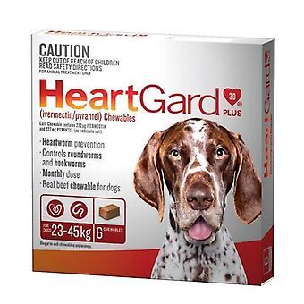 Heartgard Plus pureskella Brown 6 Pack