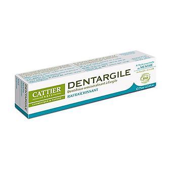 Dentargile Mint Toothpaste 75 ml (Mint)