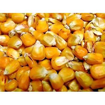 Willsbridge francouzská kukuřice - 20kg