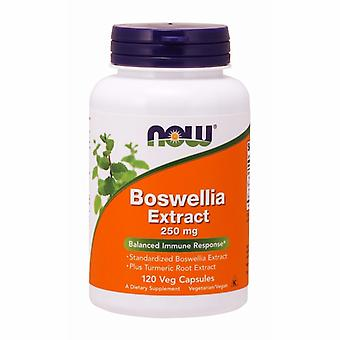 Agora Foods Boswellia Extract, 250 mgs, 120 Caps