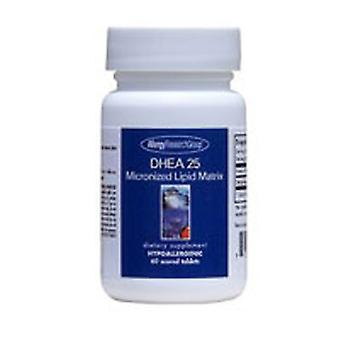 Nutricology/ Allergy Research Group DHEA, 25 mg, Micronized Lipid Matrix 60 Tabs