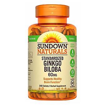 Sundown Naturals Standardiserad Ginkgo Biloba, 60 mg, 12 X 200 Flikar