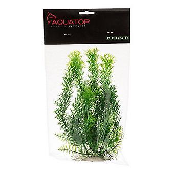 """Aquatop Cabomba akvarijní rostlina - zelená - 9"""" vysoká hmotnost s / vážená základna"""