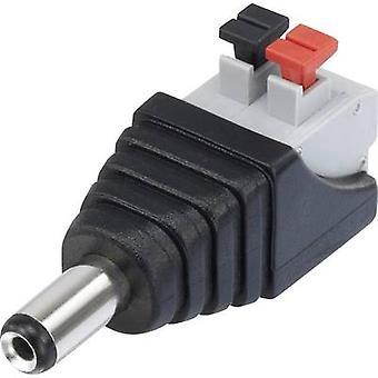 Conrad Components QT-DC2.1M Low power connector Plug, straight 5.5 mm 2.1 mm 1 pc(s)