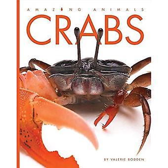 Crabs (Amazing Animals)