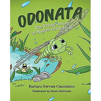 Odonata: The Flying Jewel of Maiden Grass Pond