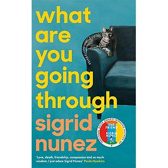 What Are You Going Through by Nunez & Sigrid