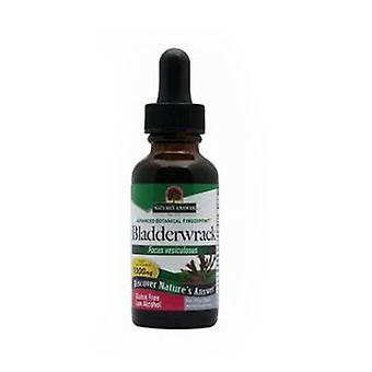 Nature's Answer Bladderwrack, Extract 1 FL Oz
