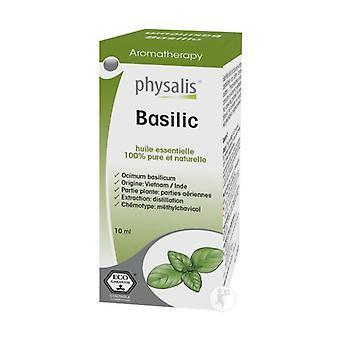 Basil 10 ml