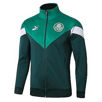 2019-2020 Palmeiras Puma Iconic MCS Track Jacket (Grün)