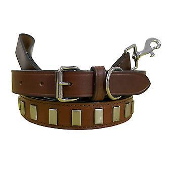 Collier de chien de paire assortie en cuir de Bradley et jeu de tête bcdc10tanbrown