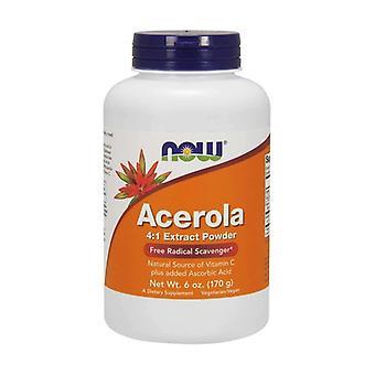 Acerola 4: 1 Extract Powder 170 g of powder