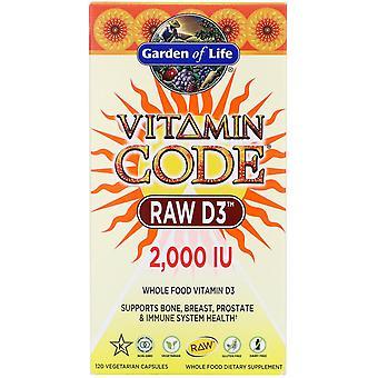 Livets trädgård, Vitaminkod, RAW D3, 2 000 IE, 120 vegetariska kapslar