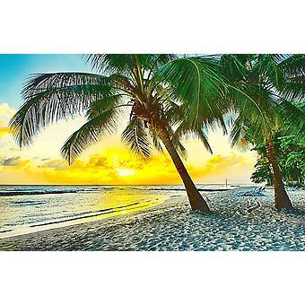 Seinämaalaus kaunis auringonlasku meren yli Barbadoksella