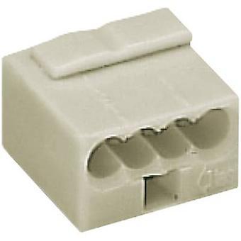 Kroonsteen rigide: -0,8 mm² aantal pins: 4 WAGO 1 PC('s) lichtgrijs