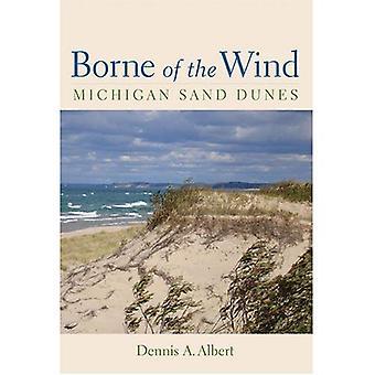 Des Windes getragen: Michigan Sanddünen