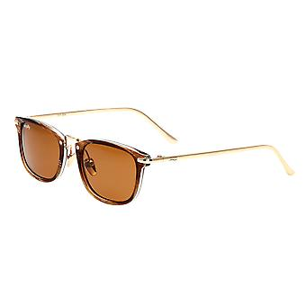 Simplify Foster Polarized Sunglasses - Brown/Brown