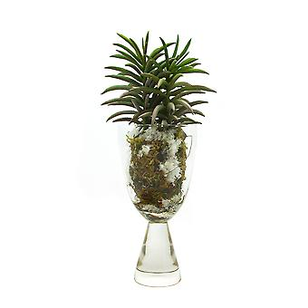 Artificial Succulent in Soil and Snow Vase, Arrangement 1. Real Touch and Look Greenery