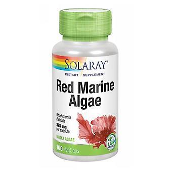 Solaray Red Marine Algae, 375 mg, 100 Caps