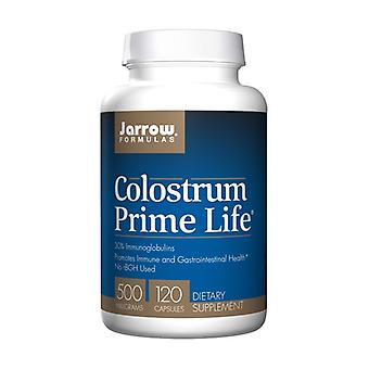 Colostrum Prime Life 500Mg 120 كبسولة