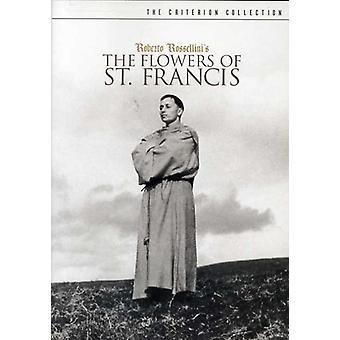 Blommor av st Francis [DVD] USA import